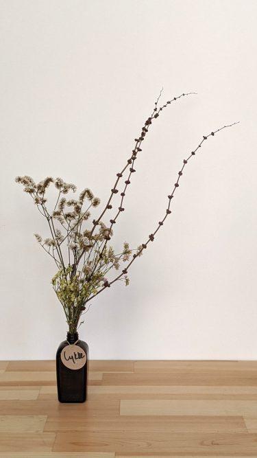 הליקה הזו מכילה חרדלית חומה ופרחים מיובשים צבעוניים (ורודים, צהובים, לבנים וייתכנו גם סגולים).
